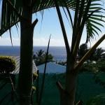Location de studio à Saint-Leu : la Réunion