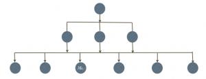 systeme-hierarchique