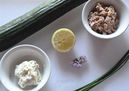 ingrédients Toasts de concombre et rillettes de thon