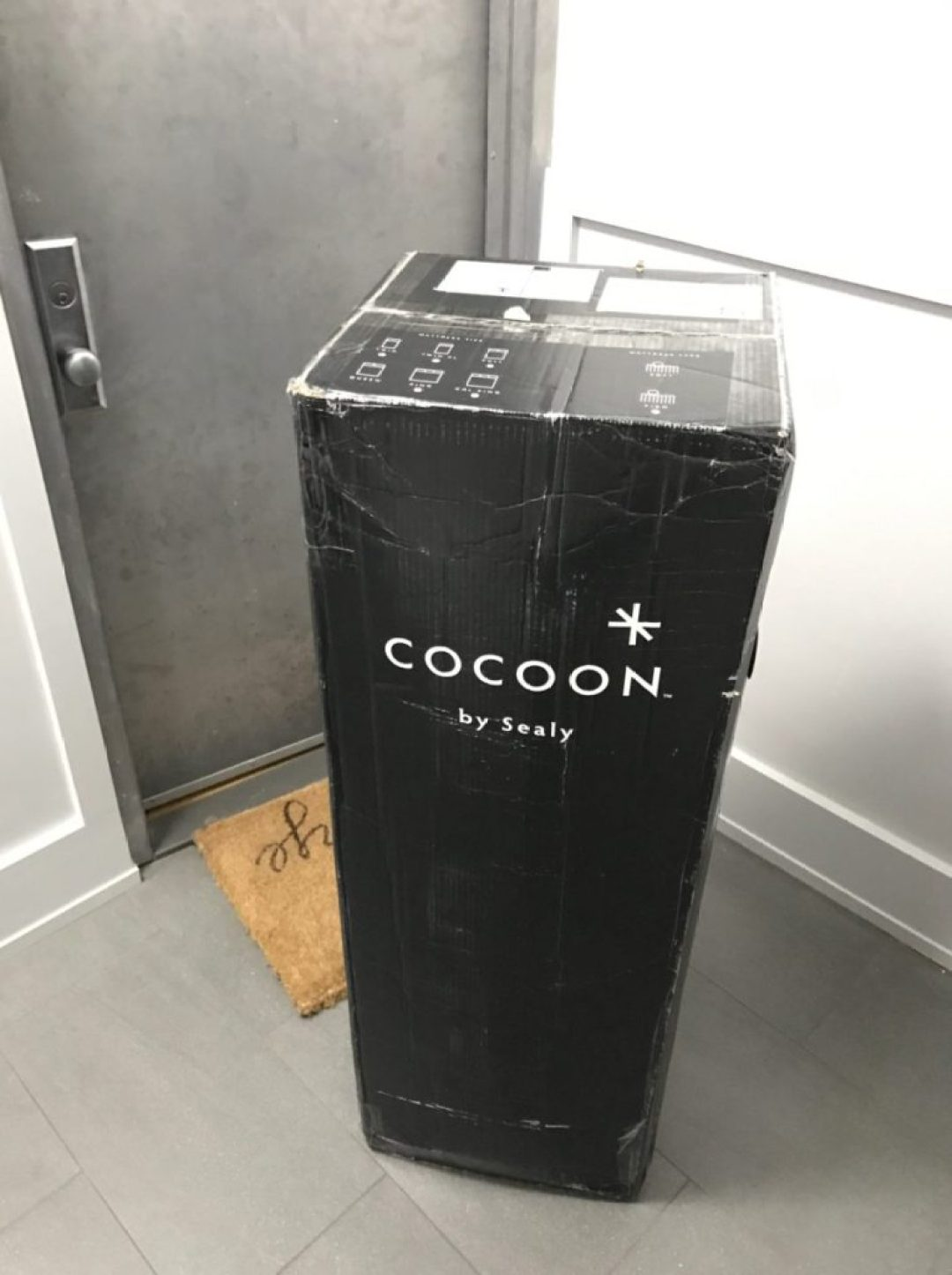 Cocoon Chill Delivery