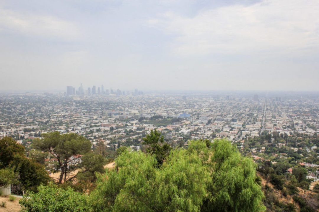 Los Angeles - Liliesandloafers