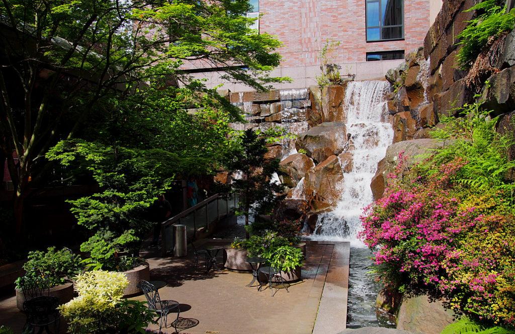 Waterfall Garden Park