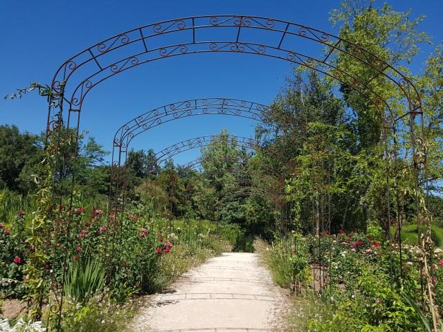 Roseraie - Jardins des Martels
