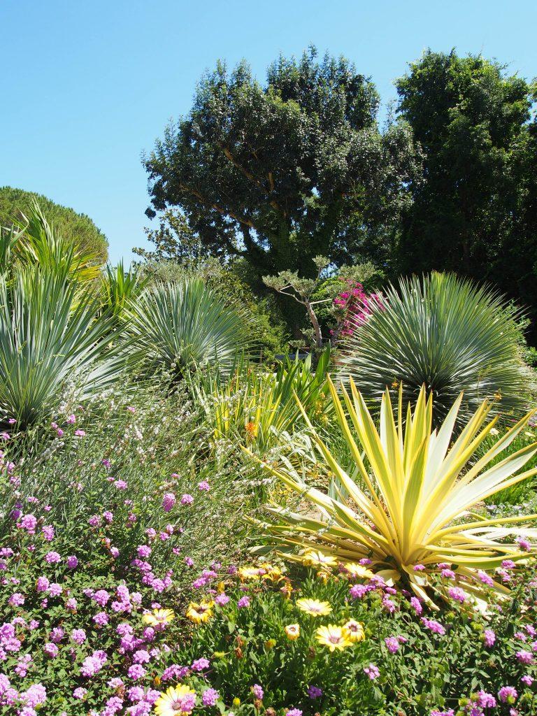 Jardin Méditerranéen - Jardins des Martels