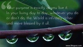 On Purpose