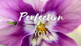ThePerfectionYou