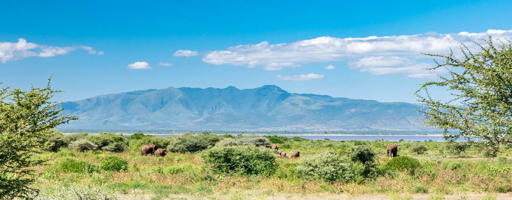 Photo guide - A safari in Tanzania - Lake Manyara National Park