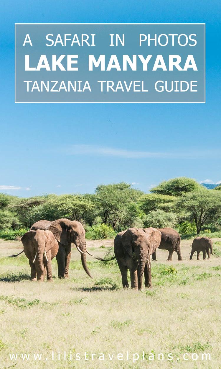 Photo guide - A safari in Tanzania - Lake Manyara National Park