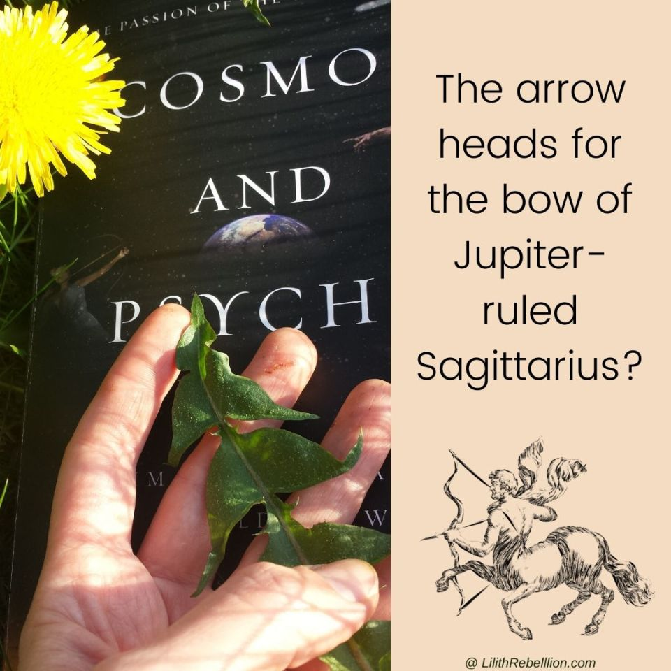 Cosmos and Psyche book on the grass beneath a hand holding a dandelion leaf with the accompanying caption: The arrow heads for the bow of Jupiter ruled Sagittarius?