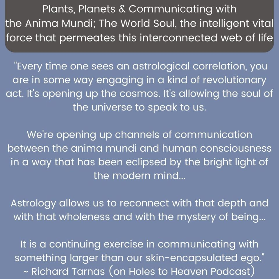 Quote from richard Tarnas about astrology being a way that the soul of the universe speaks to us