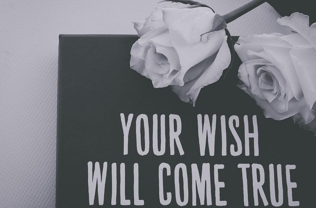 28/365 – 067 En väntande dröm