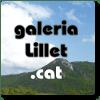 galeria_lillet_cat_-cuadrat-03