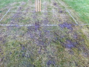 Hexton pitch after the rain