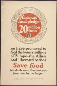 _America's_Food_Pledge_20_Million_tons._We_have_promised_to_feed_the_hungry_millions_of_Europe-_the_Allies_and..._-_NARA_-_512593[1]