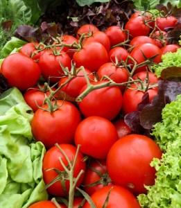 tomatoes-heirloom