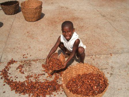 Child labor in chocolate