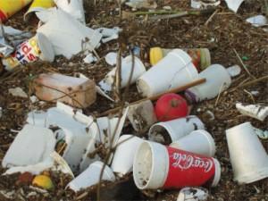 fast food trash