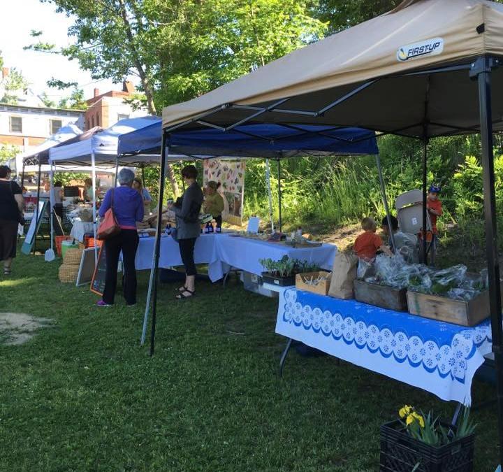 Farmington Farmer's Markets Make Fridays Awesome
