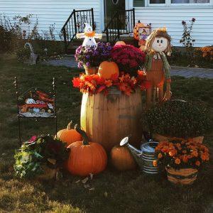 front-yard-autumn-arrangement