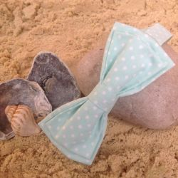Image of Lilly Dilly's pale blue polkadot bowtie resting on a pebble on the sand with some shells