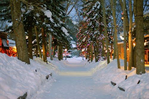 Snowy Lane, Aspen, Colorado