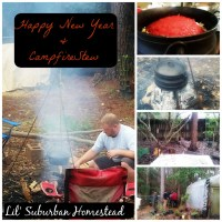Happy New Year & Campfire Stew