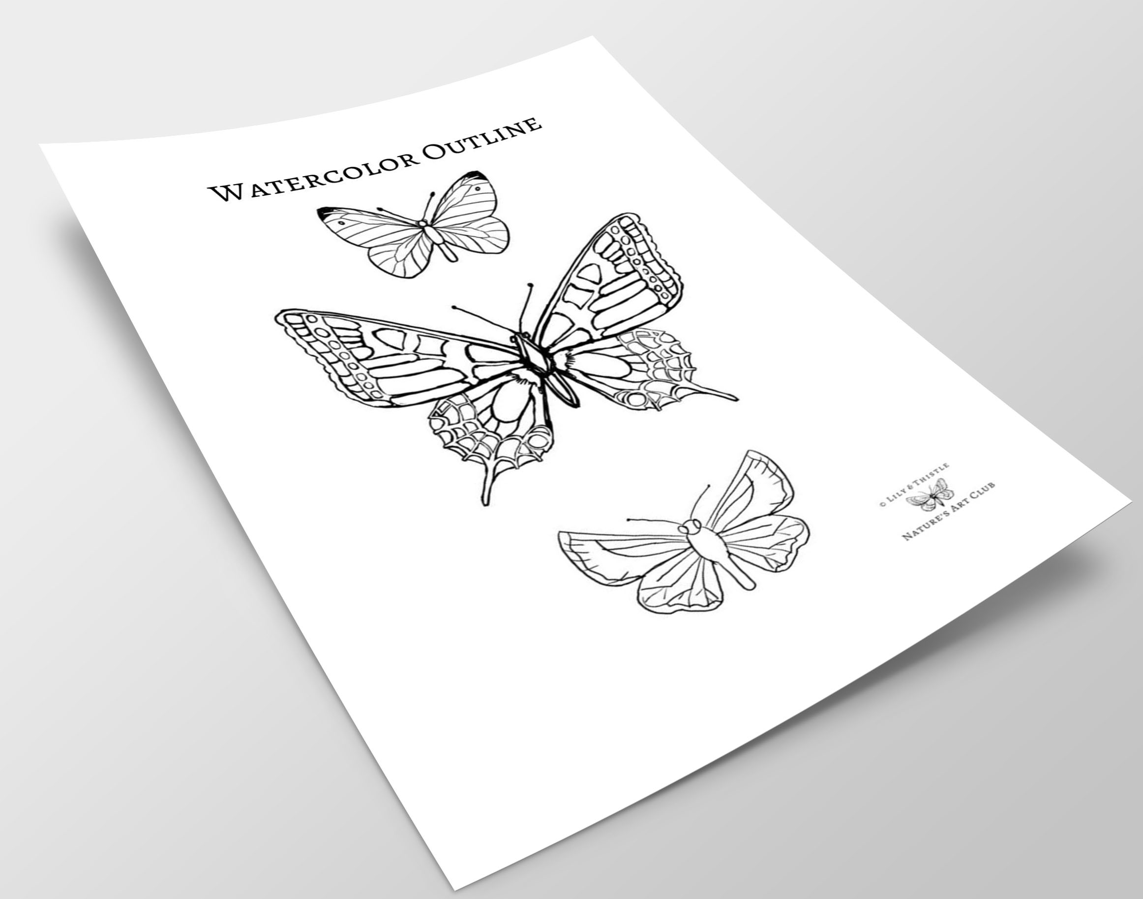 How To Watercolor Paint A Butterfly For Beginners And Kids