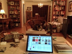 """This is taken from the couch between the speakers. Waffles is sitting in the sweet spot. Our friend Hollis commented """"she looks like she's getting ready to fire you."""""""