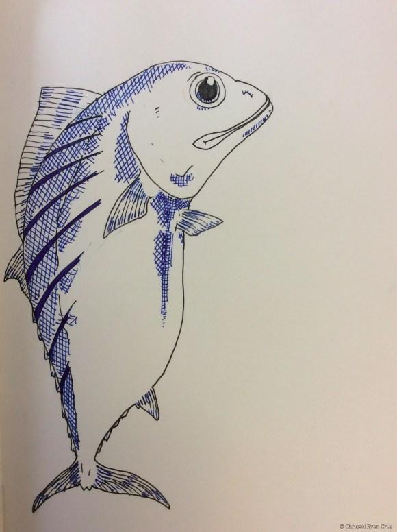 Bonito, un pez noble