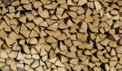 brandhout.jpg
