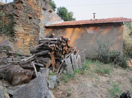 wood2013