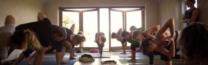 Lime House Yoga Teacher training header 2