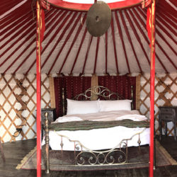 Red Yurt Header