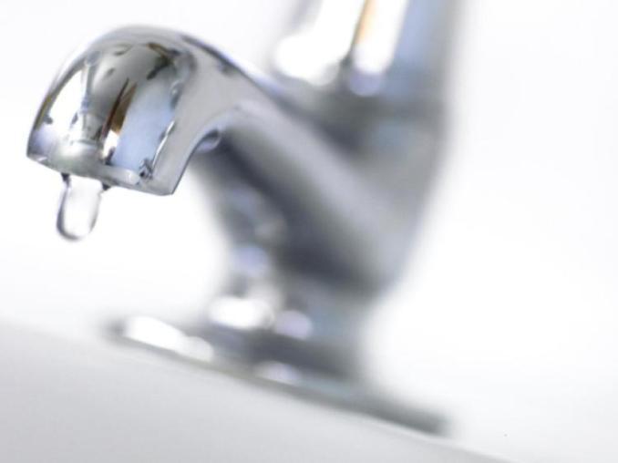 Image result for irish water jpg
