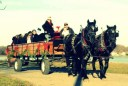 Stamford-Hay-Ride-With-Santa-Image