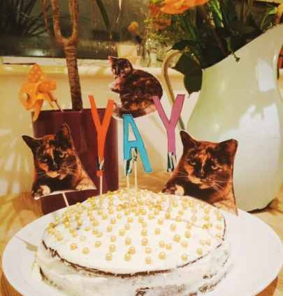 Recipe Red Wine Velvet Cake to honour my kitty Ishtar