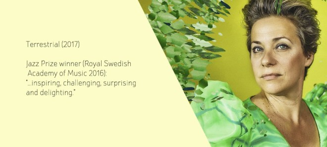 Image result for Lina Nyberg - Terrestrial 2017