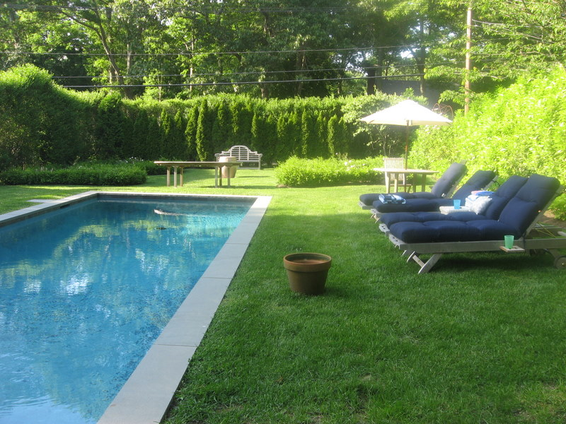 18 - Pool and garden