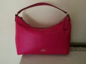 purse-1