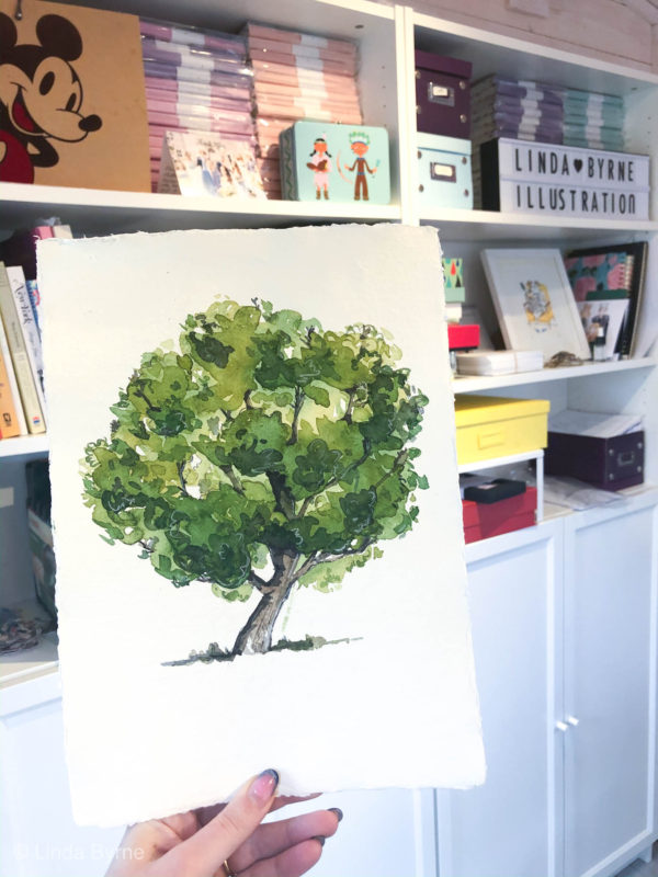 Painting tutorial : how to paint an Irish oak tree in watercolour, Linda Byrne Illustration