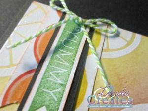 Taste of Summer Card 2 Pennant Tag Linda Creates ~ Linda Caler www.lindacreates.com www.lindacreates.ctmh.com