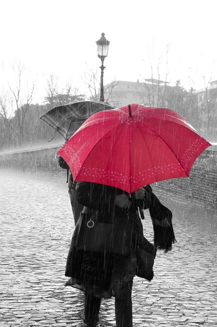 see the beauty in a rainy day