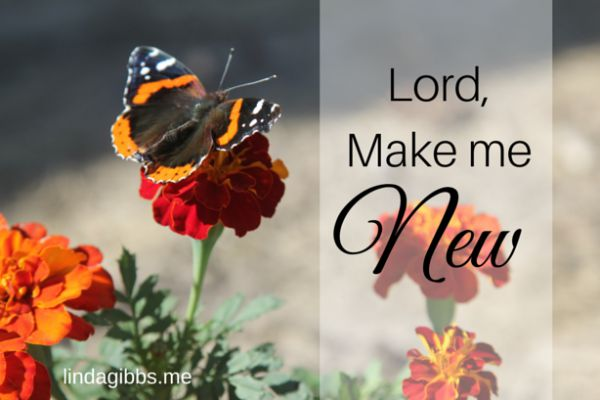 Lord Make Me New