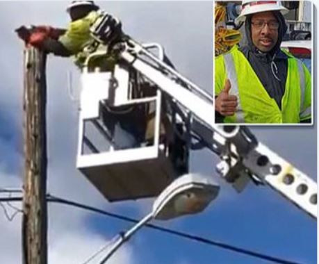 Telecoms company suspends worker for using work equipment to rescue a cat