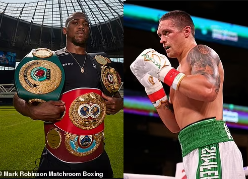 Anthony Joshua warned he is set for a 'rough ride' in his heavyweight clash with Oleksandr Usyk by Johnny Nelson