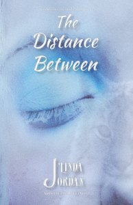 Book Cover: The Distance Between