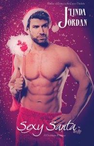 Book Cover: Sexy Santa