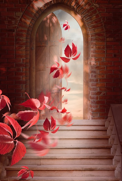 open door with leaves