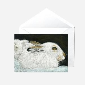 Sumburgh Head Puffins - Card