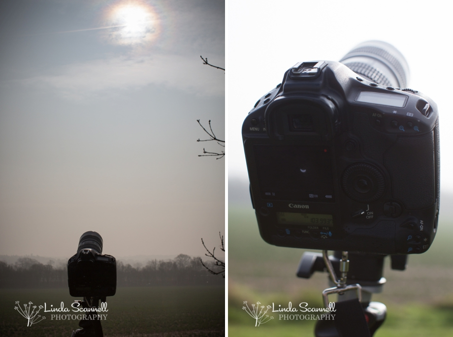 Canon EOS 1D Mk IV photographing solar eclipse | Linda Scannell